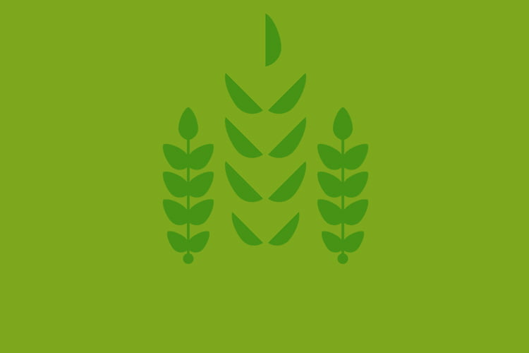 Impacto de la ciencia y la tecnologia en el campo agrícola