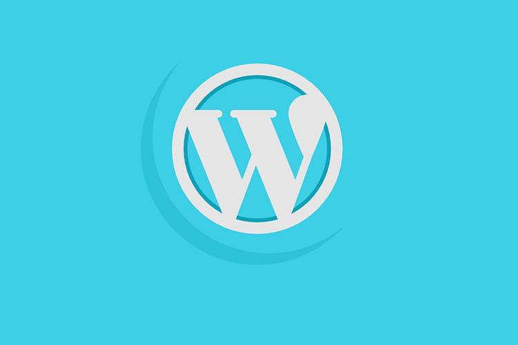 Cómo forzar al navegador a borrar el caché en WordPress