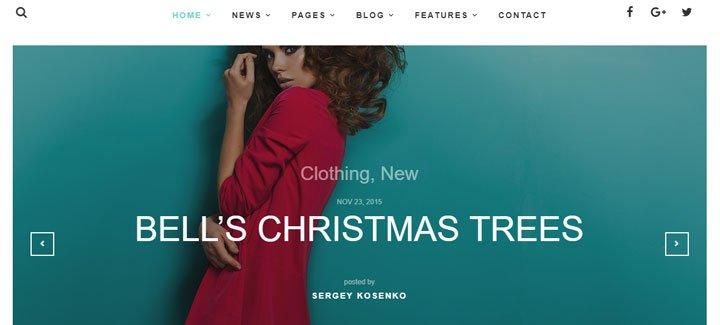 20+ los mejores Temas WordPress para sitios web de moda | Tecneofito
